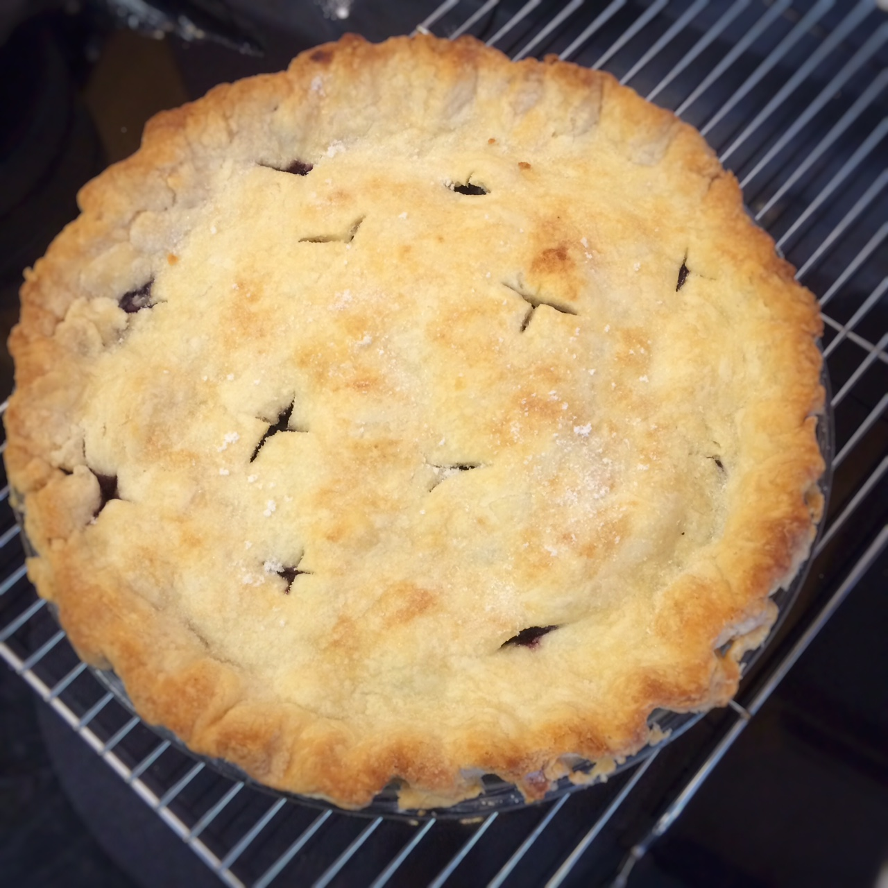 blueberry pie @ whirlwhim.com